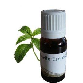 Aceite Esencial Hidrosoluble Humidificador Menta La Casa de Las Aromas