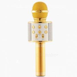 Microfono Karaoke Wireless